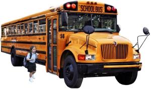Idei de afaceri 2012: Transport copii
